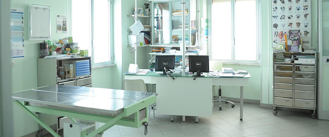 Ambulatorio veterinario dott belli e della lisi for Veterinario di punto di cabina